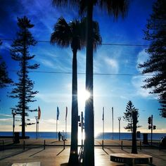 Suns up over Manly Corso