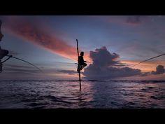 AWAKEN Trailer 4K - YouTube