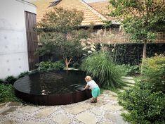 Courtyard garden at Boomerang St... Charlie's gone fishing 🎣 #christopherowenlandscapedesign #samcrawfordarchitects #rhystyledgardens…