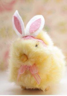 Fuzzy Bunny Chick