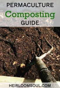 An awesome, comprehensive step-by-step guide to starting your own compost pile or bin.  Organic permaculture gardening techniques from an expert!  Very in-depth advice!  heirloomsoul.com