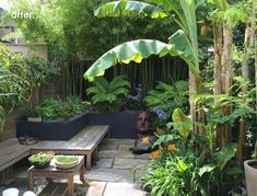 Antonia schofield garden design specialises in bringing tired and awkward residential gardens and outdoor spaces back to life. Small Tropical Gardens, Tropical Garden Design, Small Courtyard Gardens, Tropical Backyard, Backyard Garden Design, Tropical Landscaping, Small Garden Design, Small Gardens, Backyard Landscaping