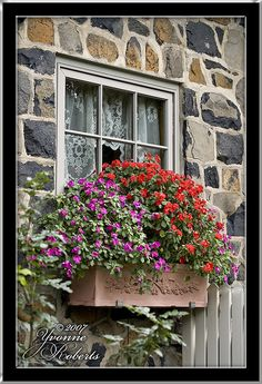 Tht combination of the rough stone, lace window curtains and beautiful flowers... Beautiful!