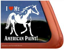 I LOVE MY AMERICAN PAINT! Horse Trailer Window Decal Sticker