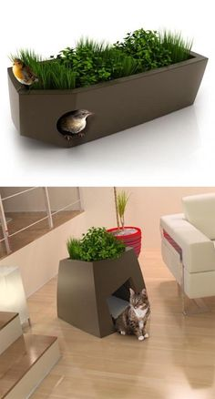 Modern cool planters, Pet and Bird Houses
