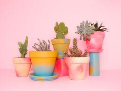 Flower pots - by mireia ruiz - www.cocolia.cat