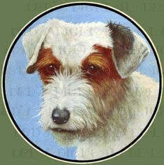 Spunky Adorable Dog Vintage Dog by DandDDigitalDelights on Etsy