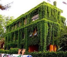 This building would be great to be in on a hot summer day. Nature's air conditioning!