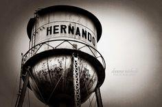 Hernando MS