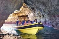 Caves and Dolphin Watching Cruise from Albufeira-Albufeira-Portugal-Dolphin & Whale Watching