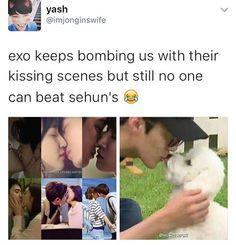 Sehun is invincible in every way!He is the besstttt. Funny Kpop Memes, Exo Memes, Dankest Memes, Exo Ot12, Chanbaek, Kaisoo, K Pop, Chanyeol Baekhyun, Sehun Vivi