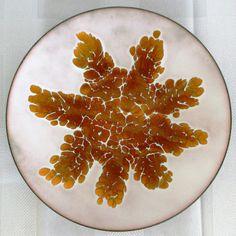 Kareka Copper Enamel White & Gold Snowflake Plate Vintage Beautiful USA #Kareka Enamel Dishes, Snowflakes, Art Decor, Copper, White Gold, Plates, Usa, Antiques, Bowls
