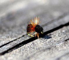 Ant Fishing Fly Fly Fishing Fly Fly Fishing by WhiskeyRiverFlies