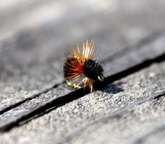 Ant Fishing Fly, Fly Fishing Fly, Fly Fishing Gear, Fly Fishing Gift, Fly Fishing Flies, Fishing Gift, Fishing Lure, Fishing Bait, Fish