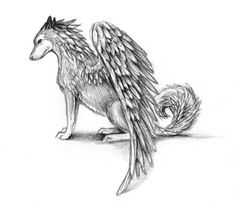 wolf head drawing side - Google Search