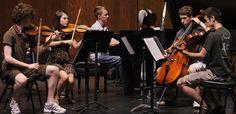 Heartland Chamber Music Academy, Music School. Alice Huang.  www.heartlandmusicacademy.com