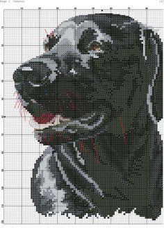 Cross stitch Chester 1