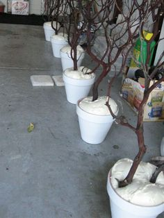 Do-it-yourself outdoor lighting for Weddings or Parties!  EZ - in bottom of container place something of weight; fill with spray-in foam around inserted branches.  Paint branches first, if desired and add twinkle lights after foam has dried.  Cover foam with spanish moss.