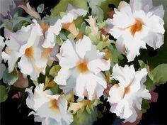 "jean crane artist | Petunias"" ~ Jean Crane, watercolor"
