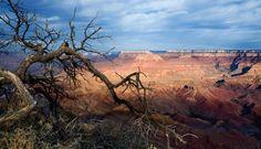 http://vistanciahomespeoriaaz.com/ Real Estate Licensed Broker, AZ