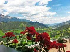 view from our hotel in the Ennstal valley - Blick vom Hotel ins Ennstal