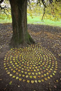 James Brunt Artist Autumn Leaves is part of Leaf art - Andy Goldsworthy Art, Kunst Der Aborigines, Ephemeral Art, Foto Real, Environmental Art, Nature Crafts, Outdoor Art, Whimsical Art, Sculpture Art