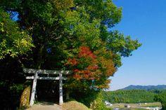 妙見神社の巨石 - 鹿児島の自然と食