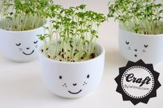 Crafts to Make and Sell - DIY Cress Cups with a Face - Cool and Cheap Craft Projects and DIY Ideas for Teens and…