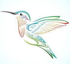 Download Free Colorful Hummingbird Vector under the free Vector Animal category(ies) at TitanUI.CoM!