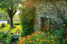 rustic country garden