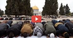 What Muslims don't want you to know about the Temple Mount. The truth hurts.