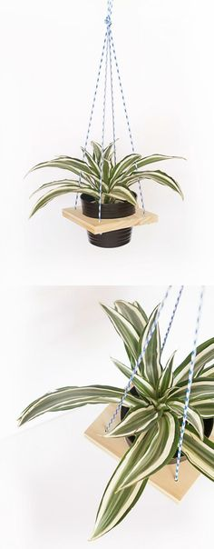 Wood DIY Plant Hanger for Any Decor Use a plywood block to make this simple and modern DIY plant hanger – you'll have a few of these hanging in your home before long! Wood Crafts, Diy And Crafts, Home Projects, Craft Projects, Diy Inspiration, Idee Diy, Plant Holders, Plant Hanger, Container Gardening