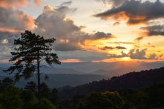 Before The Sunset - Location : Huai Nam-Dung National Park  Chiang-Mai province  Thailand