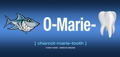 Charcot-Marie-Tooth Disorder Affects Over 2 Million People