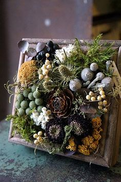Creative dried flower panels: 30 ideas Decor ideas The p . Flower Boxes, Flower Frame, Flower Art, Deco Floral, Floral Design, Deco Nature, Dried Flower Arrangements, How To Preserve Flowers, Green Flowers