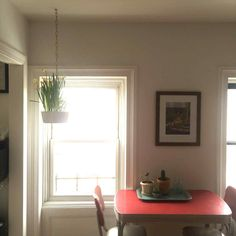 Plants From The Ceiling plant ideas to beauty your small home hanging rhpinterestcom cool things from ceiling fans educlubusrheduclubus cool How To jpg