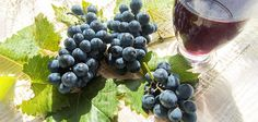 Resveratrol may Benefit Your Arteries, Especially if You Have Type 2 Diabetes | Natural Society