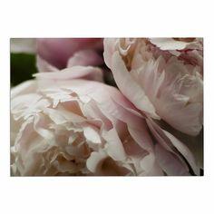 2 x 3 Floor Mat Kess InHouse Cristina Mitchell Breathe White Blue Floral Photography Decorative Door