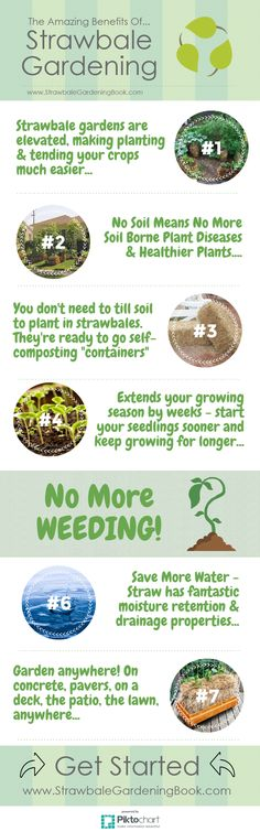 The Amazing Benefits Of Strawbale Gardening. Find Out How To Get Started At... http://www.strawbalegardeningbook.com