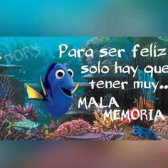 In Finding Dory, it is six months after we went to find Nemo and Dory has suddenly remembered some of her childhood. Mr Wonderful, Finding Dory, Christian Encouragement, Disney Quotes, Spanish Quotes, Positive Quotes, Funny Quotes, Inspirational Quotes, Thoughts