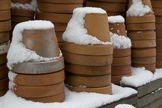 Pots & Snow