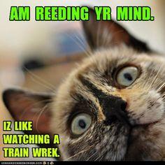 reeding yr mind.  like train wrek