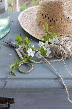 Campagne, Chapeaux, Fleurs, Atelier, Jardin Bleu, Fleurs Saisonnières,  Petits Jardins 6d295a0656c