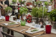 Rustic Italian Village party in Tuscany, Herbs, Tomatoes and fresh green. Charming atmosphere