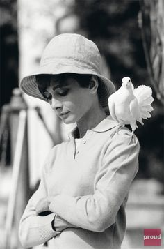 such an exquisite photo of Audrey Hepburn