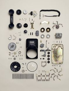 Everyone has a piece of the puzzle  Pphotography by Todd McLellan