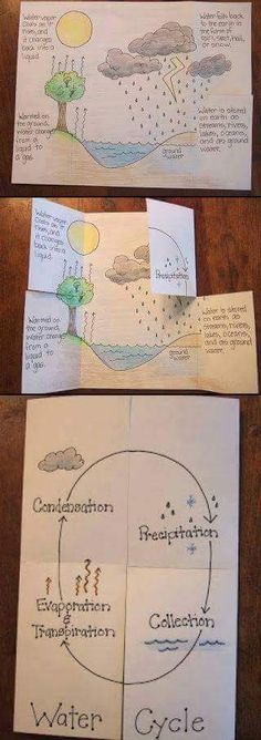 need to use with grade.notice how the book physically represents the water cycle.not just a worksheet Water Cycle Foldable. need to use with grade.notice how the book physically represents the water cycle.not just a worksheet 4th Grade Science, Middle School Science, Elementary Science, Science Classroom, Teaching Science, Science Education, Science For Kids, Earth Science, Elementary Schools