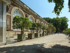 HD photographs showing the Orangerie building that is found on the north west side of Jardin du Luxembourg gardens in the Arrondissement of Paris. Luxembourg Gardens, Trees, Display, Building, Gardens, Floor Space, Billboard, Tree Structure, Buildings