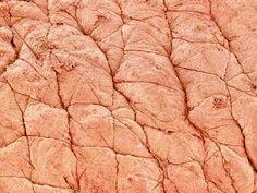 Human Skin Photographic Print at Art.com