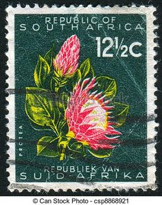South Africa 1961 First Republick SG 207 Fine Used SG 207 Scott 263 Condition Fine Used Only one post charge applied on multiple purchases Details N South African Flowers, South African Art, Protea Art, Protea Flower, South Afrika, Japanese Stamp, African Tattoo, Postage Stamp Art, Stamp Printing